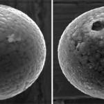 Investigadores japoneses encuentran micrometeoritos de hace 240M-años