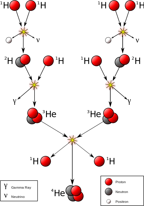 The proton-proton chain occurring inside a small to mid-sized star (v are neutrinos and γ are gamma rays) (Source: Wikimedia commons).