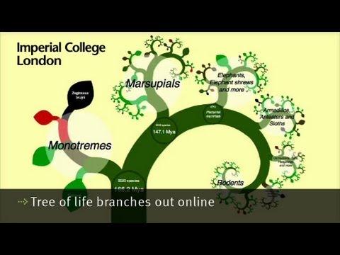 Una nueva herramienta para visualizar el árbol de la vida