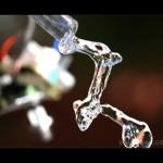 Vídeo: aliasing temporal y agua cayendo hacia arriba