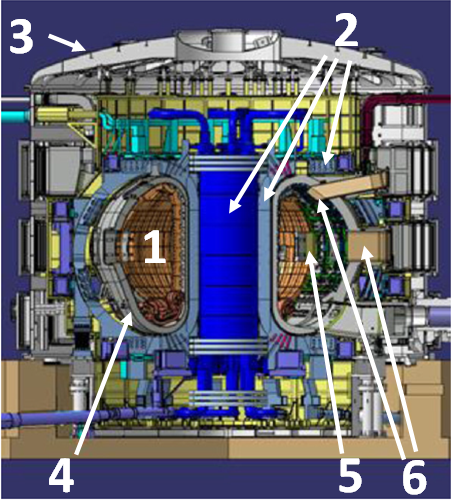Cross section of the latest design for the ITER machine (Modified from [1])