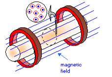 Red circles in the cross section stand for the circular paths of charged particles around the magnetic field lines (blue) (Source: CEA)